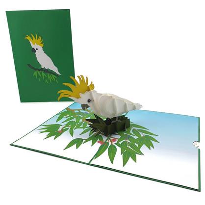 Sulphur Crested Cockatoo (A049)