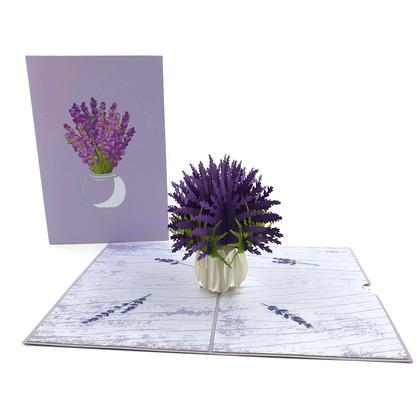 Lavender (FL043)